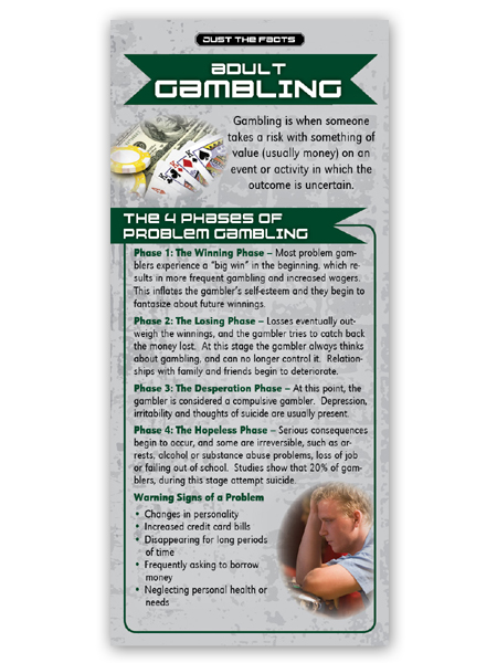 Just the Facts Rack Card: Adult Gambling