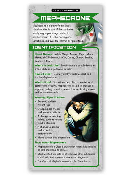 Just the Facts Rack Card: Mephedrone
