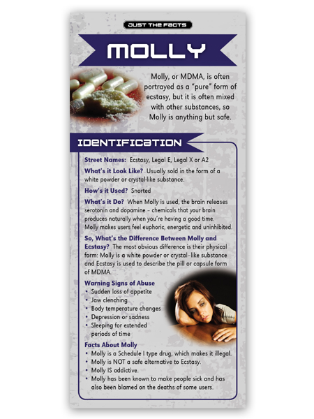 Just the Facts Rack Card: Molly