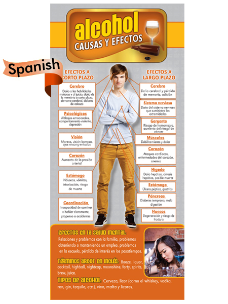 *SPANISH* Cause & Effect Rack Card: Alcohol