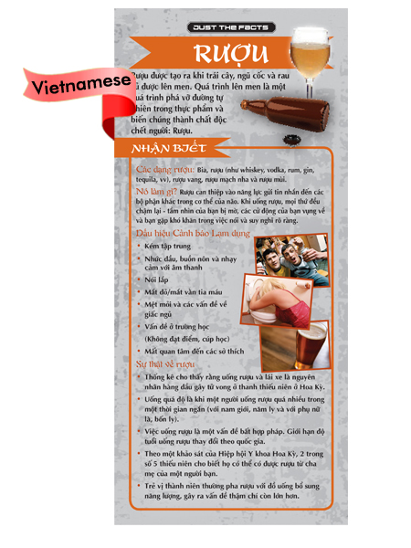 *VIETNAMESE* Just the Facts Rack Card: Alcohol