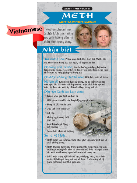 *VIETNAMESE* Just the Facts Rack Card: Meth (Methamphetamine)
