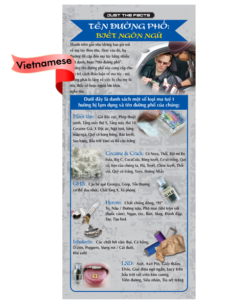 *VIETNAMESE* Just the Facts Rack Card: Street Names (Know the Lingo)