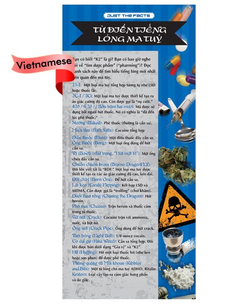 *VIETNAMESE* Just the Facts Rack Card: Drug Dictionary