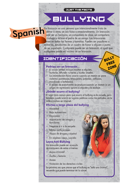 *SPANISH* Just the Facts Rack Card: Bullying
