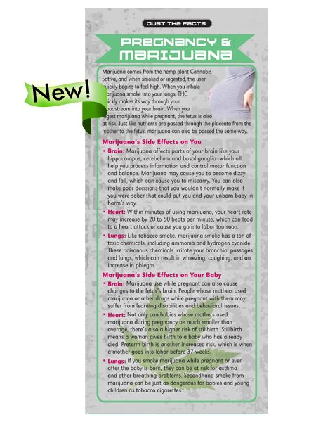 Just the Facts Rack Card: Pregnancy & Marijuana